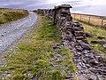 Dry stone wall on Slieu Curn Road. Isle of Man - geograph.org.uk - 32491.jpg