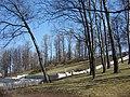 Dzegužkalns, Rīga, Latvia - panoramio.jpg