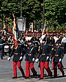 ESM flag guard Bastille Day 2008.jpg