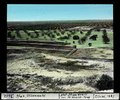 ETH-BIB-Sfax, Olivenwald-Dia 247-03602.tif