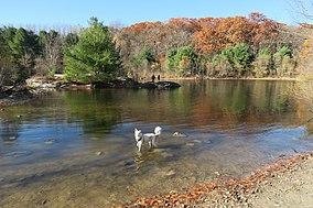 Eagle Pond, Callahan State Park, Framingham MA.jpg