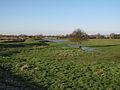East Fen Common, Soham - geograph.org.uk - 1652195.jpg