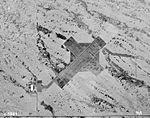 Echeverria Field - Aireal 1951.jpg