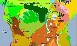 Congolian rainforests tropical rainforests of central and Western Africa