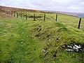 Edge of the moorland - geograph.org.uk - 693942.jpg