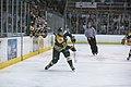 Edmonton Oilers Rookies vs UofA Golden Bears (15088645390).jpg
