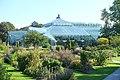 Edvard Anderson Conservatory - Bergianska trädgården - Stockholm, Sweden - DSC00186.JPG