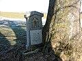 Eingewachsener Stein - panoramio.jpg