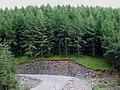 Elenydd Soil Profile, near Bronbyrfe, Ceredigion - geograph.org.uk - 520314.jpg