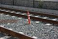 Embedded cone (3800703718).jpg