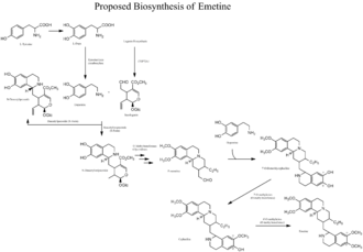 Emetine - Proposed biosynthesis of emetine