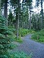 Emigrant Springs walkway.JPG