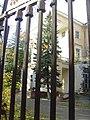 Empty palace... - panoramio.jpg