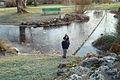 Enfant en hivers au Jardin botanique de Genève 02.JPG