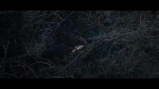 """File:Ensiferum - """"Andromeda"""".webm"""