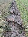 Erosion Furchen015.jpg