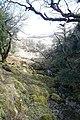 Eskamuckny Glen - geograph.org.uk - 776908.jpg