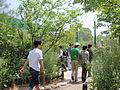 Everland zoo (8).JPG