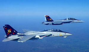 F-14B and FA-18F of VF-VFA-11 Starboard Side - 2005.jpg