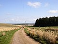 Farm track at The Dod - geograph.org.uk - 384599.jpg