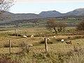 Farmland beside Llanbedr Airfield - geograph.org.uk - 1079379.jpg