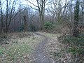 Farningham Woods - geograph.org.uk - 1706171.jpg