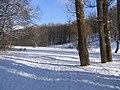 February day - panoramio.jpg