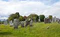 Feigh West Old Church 2010 09 07.jpg