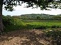 Field near Halford Cross - geograph.org.uk - 1302015.jpg