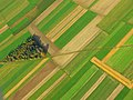 Fields - panoramio (42).jpg