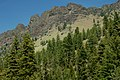 Fields Peak and Forest-Malheur (23563878039).jpg