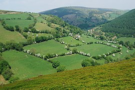 Fields and trees at Bwlch-mawr (geograph 1895258).jpg