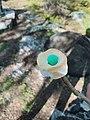 Finished Marshmallow Mini Egg.jpg