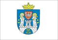 Flaga Poznan Nowa.PNG