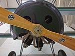 Fokker DR1 (37599474391).jpg