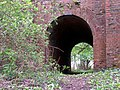 Foot tunnel beneath the railway line, Fulliford Passage, New Forest - geograph.org.uk - 427133.jpg