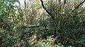 Footbridge - geograph.org.uk - 605730.jpg