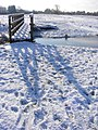 Footbridge on Outney Common - geograph.org.uk - 2666513.jpg