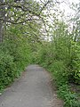 Footpath - Baptist Lane - geograph.org.uk - 1258509.jpg