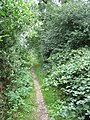 Footpath - geograph.org.uk - 213276.jpg