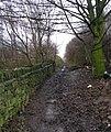 Footpath alongside Allotments - Gelderd Road - geograph.org.uk - 653201.jpg