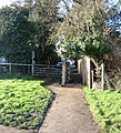Footpath and Gate - geograph.org.uk - 649099.jpg