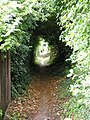 Footpath from Bridgewater Road to Berkhamsted Common - geograph.org.uk - 1450395.jpg