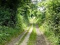 Footpath in Shabden Valley - geograph.org.uk - 1387447.jpg