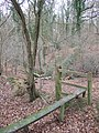 Footpath into the Woods - geograph.org.uk - 293739.jpg