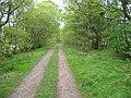 Footpath leading from Park Burn - geograph.org.uk - 178157.jpg