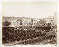 Fotografi från garveri, Jerusalem - Hallwylska museet - 104413.tif