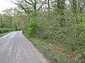 Four Oaks Wood on Four Oaks Road - geograph.org.uk - 1261817.jpg