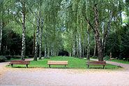 Frankfurt-Hoechst Friedhof Hauptachse