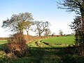 From farm track to footpath - geograph.org.uk - 1596463.jpg